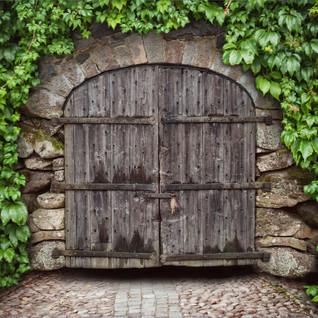 Medevil Vine Doors