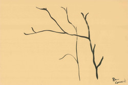 Branches Study (2) - India Ink