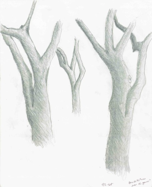 Floating Trees - Graphite