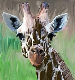giraffe_extension2