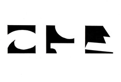 Typeface Zoom-in Study