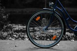 bicycle-bike-biker-205324