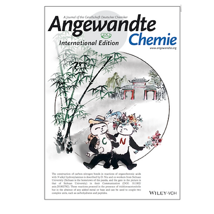 2018_anie_cover_2.png