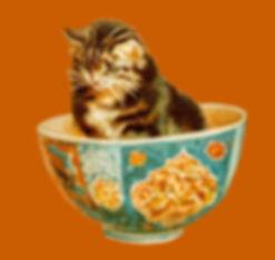 cat_bowl.jpg