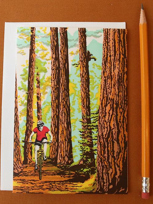 Tour de Oregon
