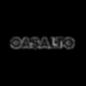 Casalto_web.png