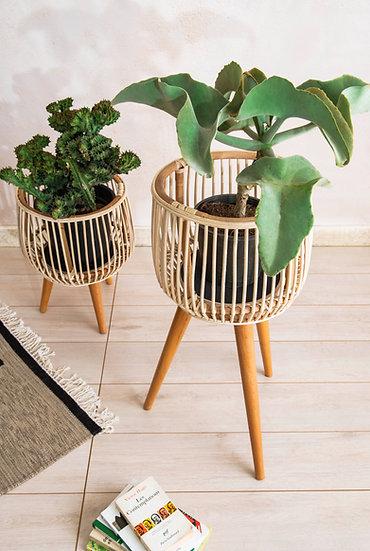 Crudo Planters Set