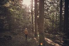 Tjej i skogen