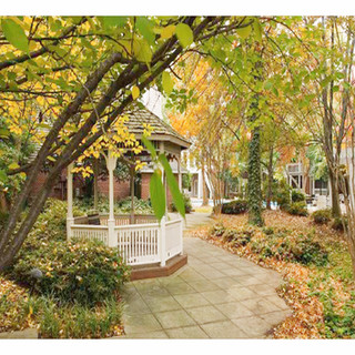 Charlotte Furnished Rentals - Uptown