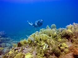 Underwater cruiser