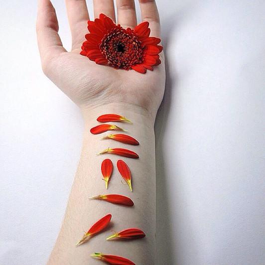 gerbera, pebbles on arm