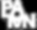logo PANAL (1).png