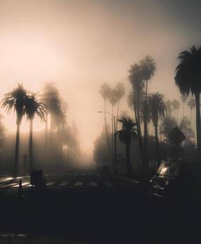 Elysian Park L.A.