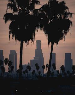 Down Town L.A.