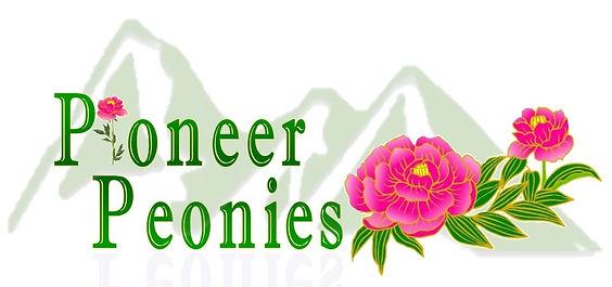 Pioneer New Final Logo.jpg