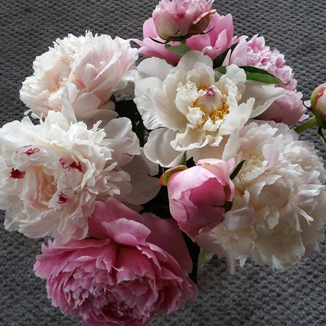 I love selling flowers. I also love taki