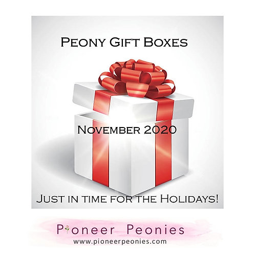 Peony Inspired Gift Box - Available in November