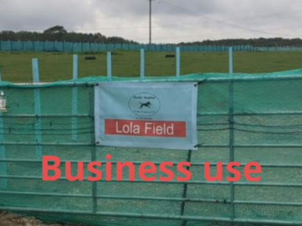 2 hours (Business use) Lola