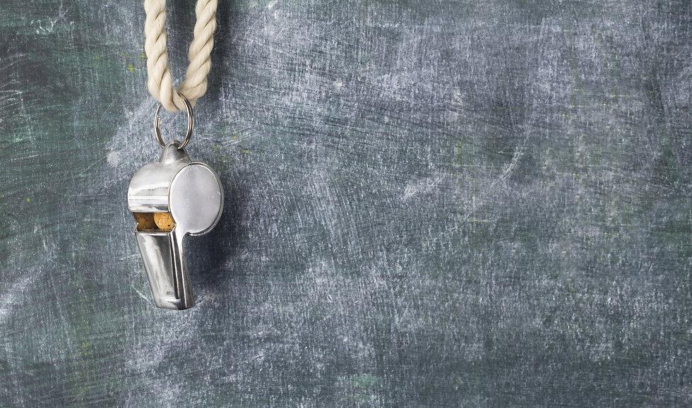 Whistle Website Photo.jpg