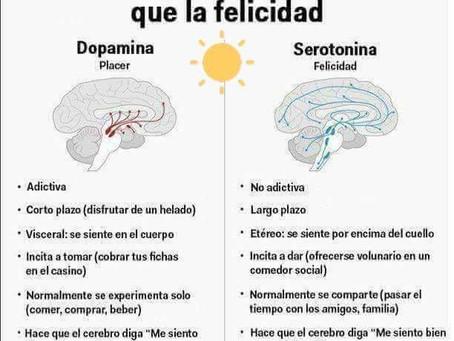 Diferencias entre felicidad y placer