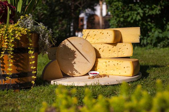 Roți de brânză maturată - prezentare