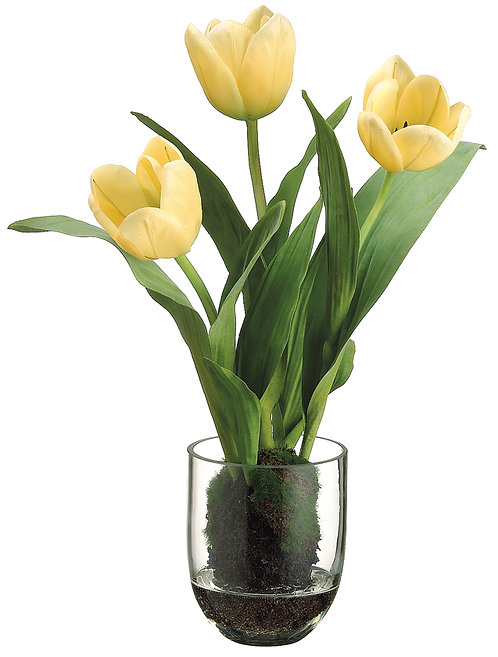 "15"" Yellow Tulip in Glass Vase - Monthly Rental"