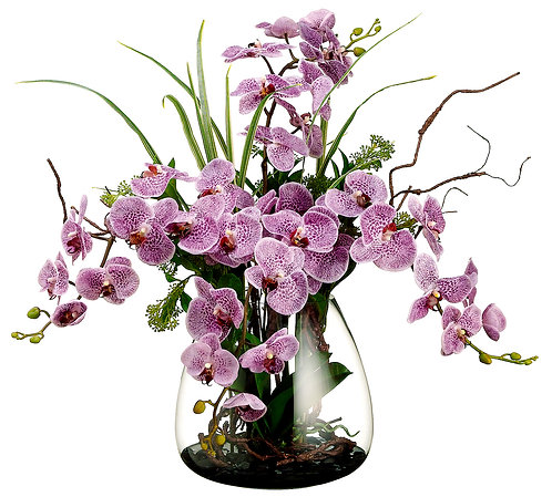 Phalaenopsis/Skimmia/Twig in Glass Vase - Monthly Rental