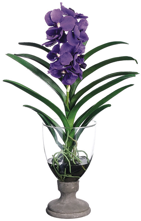 "25"" Lavender Vanda Orchidin Glass Vase - Monthly Rental"