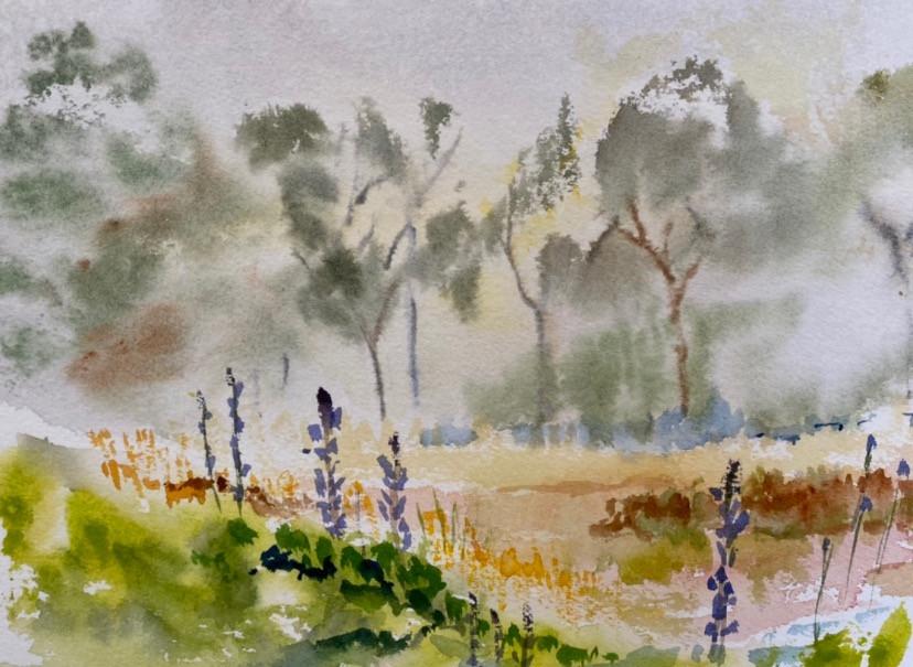 Fog and Lupine #2