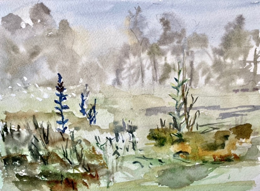 Fog and Lupine #1