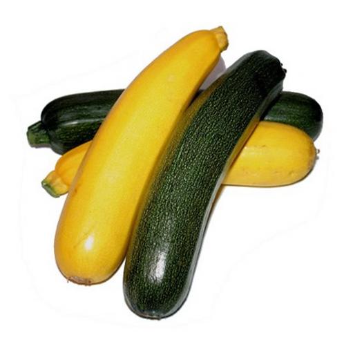 CALABACIN (2 variedades- UNIDAD)