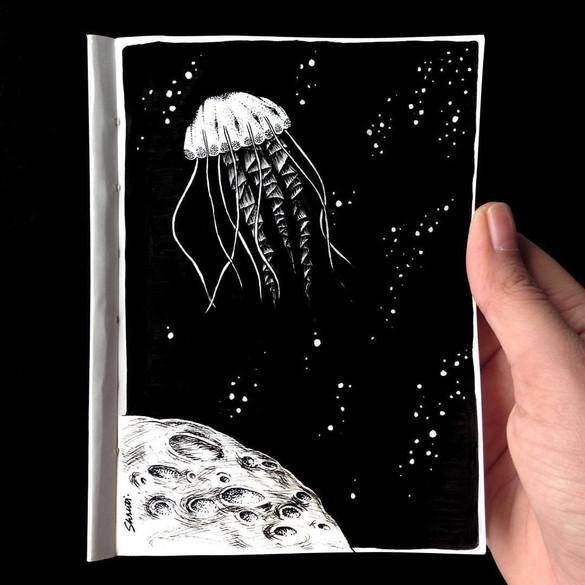 jellyfish 1.jpg