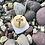 Thumbnail: Tappo - Wine Cork Pendant Necklace
