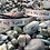 Thumbnail: I left my heart in the Cinque Terre (English / Italian)