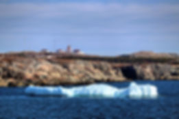 Icebergs Cape Bonavista.jpg