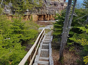 kings cove light house trail.jpg