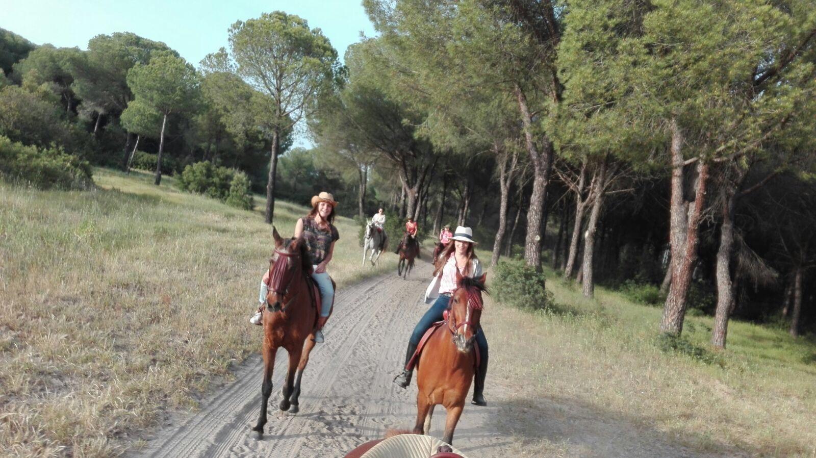 Ruta ecuestre Doñana