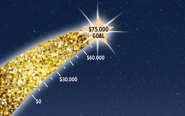 Star Swoosh We reached our goal!.jpg