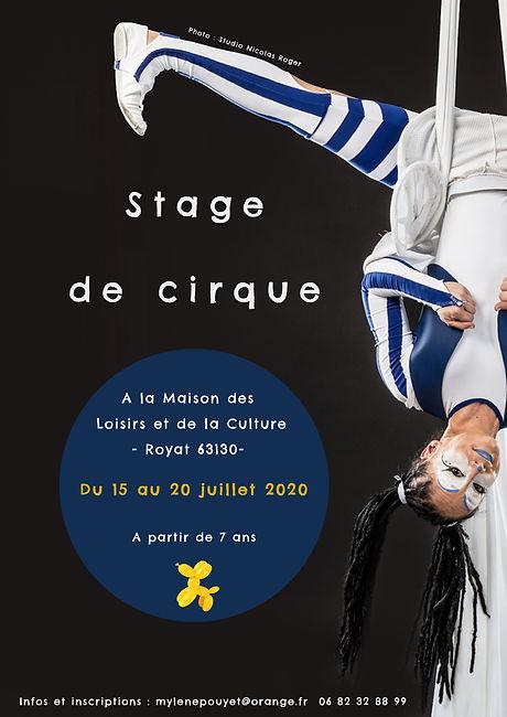 Affiche stage de cirque.jpg