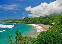 Maui Tarts