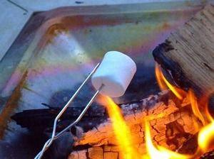 Toasted Marshmallow Tarts