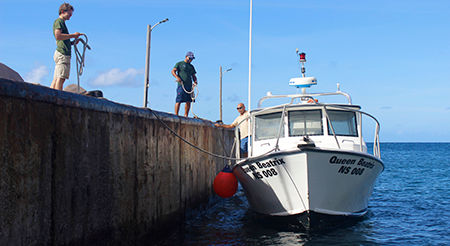 "Staff of the Saba National Marine Park mooring their patrol boat the ""Queen Beatrix"" at the Captain Leo Chance Pier - Fort Bay Harbor Saba - Dutch Caribbean - Inage by malachy multimedia n.v."