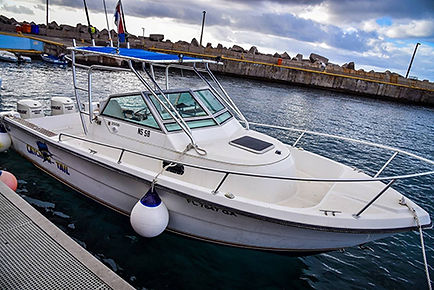 Catch-N-Tail' Charter fishing boat at Fort Bay Harbor Saba Caribbean Netherlands