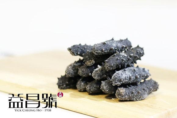 31-33支/斤 日本刺參 (1斤裝)
