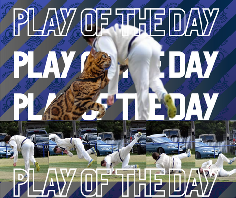 PLAY OF THE DAY (5).png