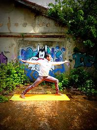yoga alliance international 26 drome france rhone alpes provence paca ardeche vaucluse gard paca languedoc roussillon ecole de yoga francaise en français diplome formation certifiée certification vinyasa hatha