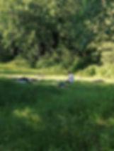 cours en plein air 2.jpg