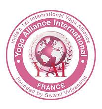 YAI France Logo - High Rez.jpg