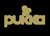 logo Pukka fond noir_gold.png