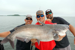 Lake Wateree Catfish Guide